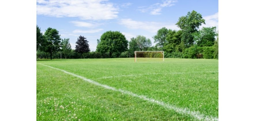 where can soccer be played - natural grass field